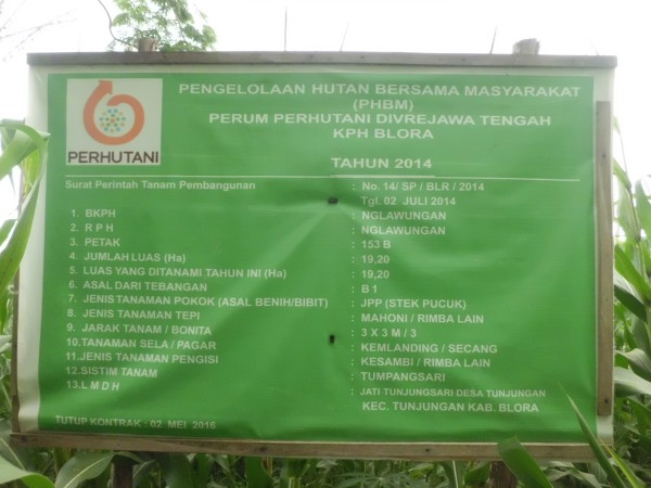 Lahan tersebut dibawah pengelolaan BKPH Nglawungan dan LMDH Jati Tunjungsari,