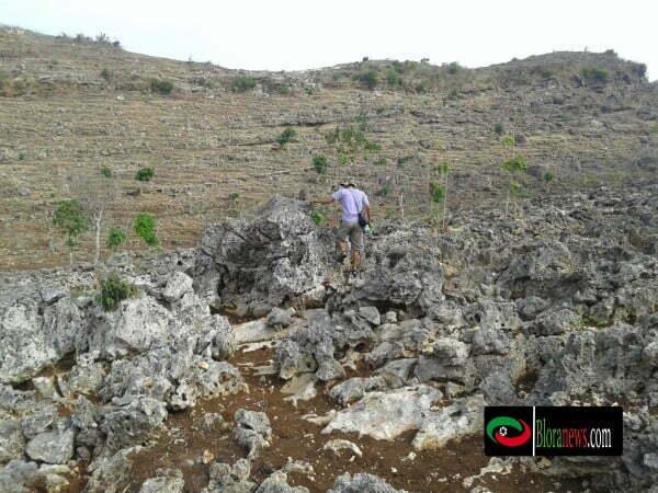 Dua ratus meter pertama pada pendakian, sabana nan luasmenyambut anda dengan rerumputan serta tumbuhan perdu yang menghijau