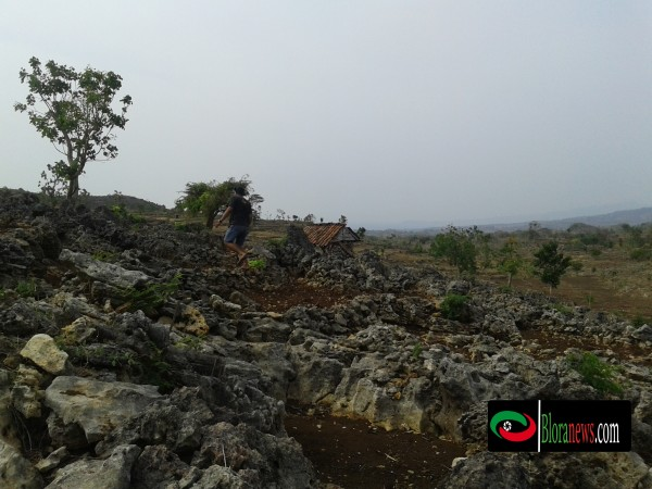 padang savana gunung mundri