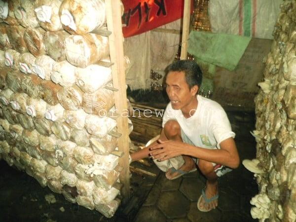 tuna netra pengusaha jamur tiram