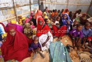 ACT SEGERA DISTRIBUSIKAN BERAS DARI PETANI JIPANG KE SOMALIA, AFRIKA TIMUR