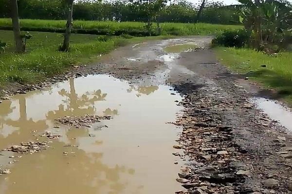 Kubangan air di ruas jalan Krocok-Japah, Kecamatan Japah, Kabupaten Blora