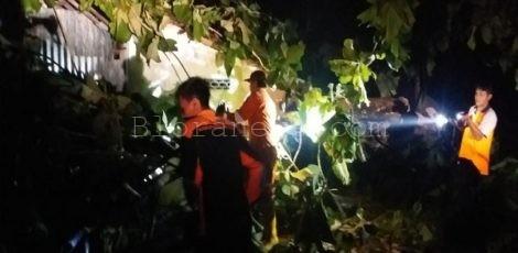 Tim Reaksi Cepat (TRC) BPBD Blora mengevakuasi pohon tumbang yang menimpa rumah warga