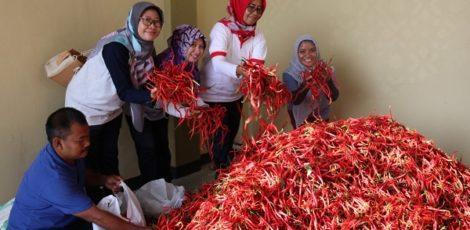 Kepala Dinas Pertanian dan Ketahanan Pangan (DPKP) Blora, Reni Miharti (jilbab merah)