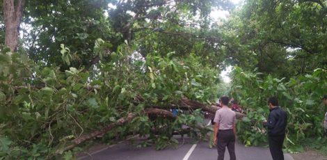 Kepala Pelaksana (Kalak) Badan Penanggulangan Bencana Daerah (BPBD) Kabupaten Blora, Sunanto,