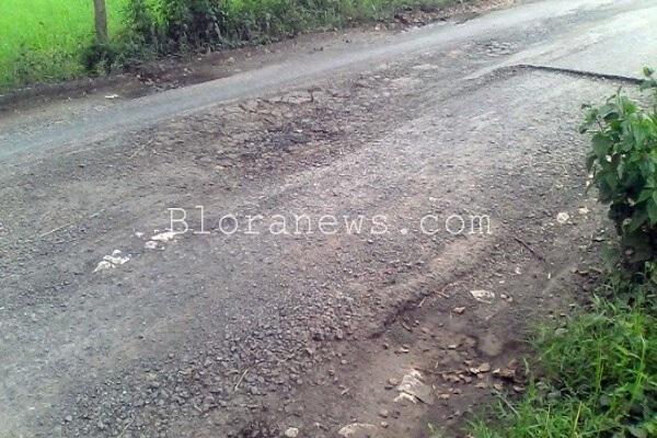 kondisi jalan Kamolan-Bankarejo
