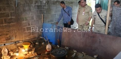 Pelatihan Prukades ternak ayam jowo super (Joper) di Balai Desa Gadu Kecamatan Sambong Kabupaten Blora