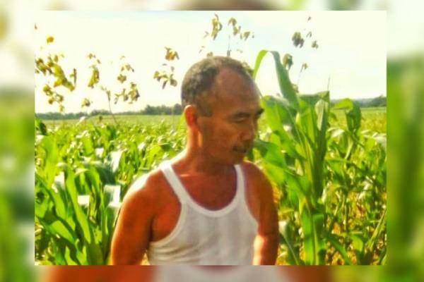 Pertanian tradisional