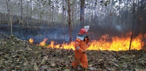 Petugas pemadam kebakaran (Damkar) memadamkan kebakaran di lahan terbuka kawasan Dusun Blimbing RT 02 RW 02 Desa Gombang Kecamatan Bogorejo Kabupaten Blora