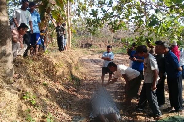 Lokasi gantung diri, kawasan tanah tegalan turut Dusun Kulur Desa Sitirejo Kecamatan Tunjungan Kabupaten Blora