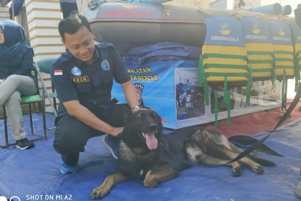 Charlie, anjing pelacak dalam unit satwa K-9 Badan Narkotika Nasional (BNN) Provinsi Jateng