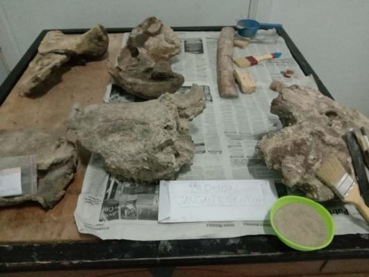 Di rumah artefak ini, tersimpan sekitar 200 benda cagar budaya dari 4 peradaban.