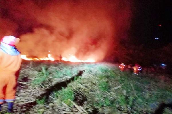 Kebakaran di ladang tebu Desa Tambaksari Kecamatan Blora Kota Kabupaten Blora
