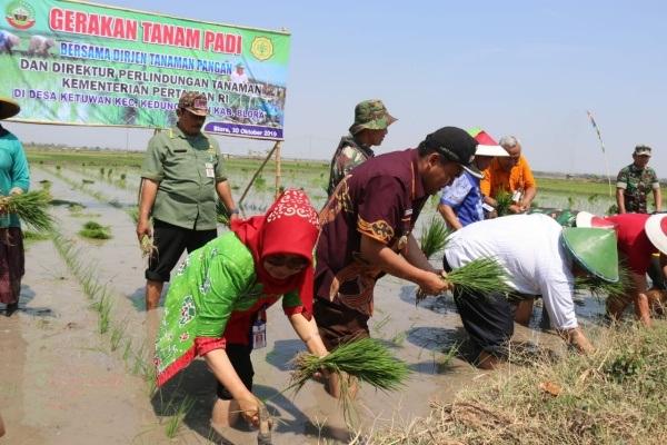 Gerakan tanam padi bersama Dinas Pertanian dan Ketahanan Panganm di Desa Ketuwan Kecamatan Kedungtuban Kabupaten Blora
