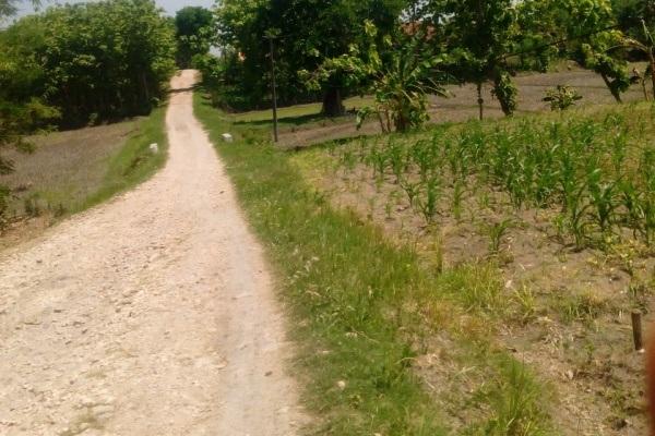 Jalan penghubung antara Dusun Mundu menuju Dusun Bangkleyan di Desa Bangkleyan Kecamatan Jati Kabupaten Blora