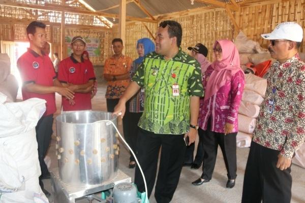 Pusat Pengembangan Ayam Joper di Desa Brabowan Kecamatan Sambong Kabupaten Blora