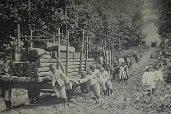 Blandong kayu jati (sumber: Cakkavatti/arti-sejarah.com)