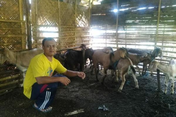 Bantuan ternak kambing program penanganan fakir miskin di Desa Bangkleyan Kecamatan Jati Kabupaten Blora