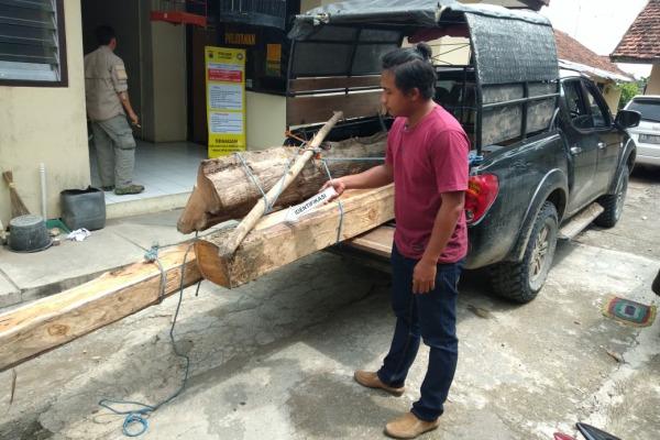 Barang bukti kayu tanpa surat sah diamankan di Mapolsek Kunduran Polres Blora