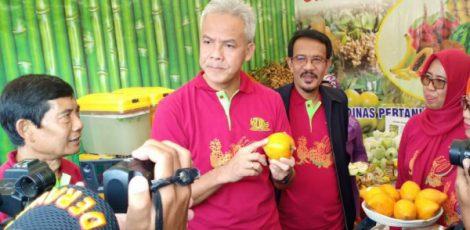 Gubernur Jawa Tengah, Ganjar Pranowo mencicipi komoditas buah unggulan Blora, Buah Alkesa atau Sawo Belanda