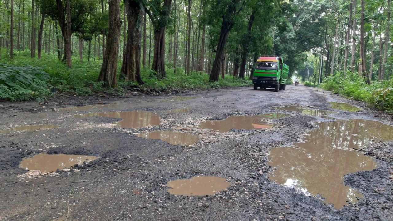 Kondisi jalan Jepon - Bogorejo