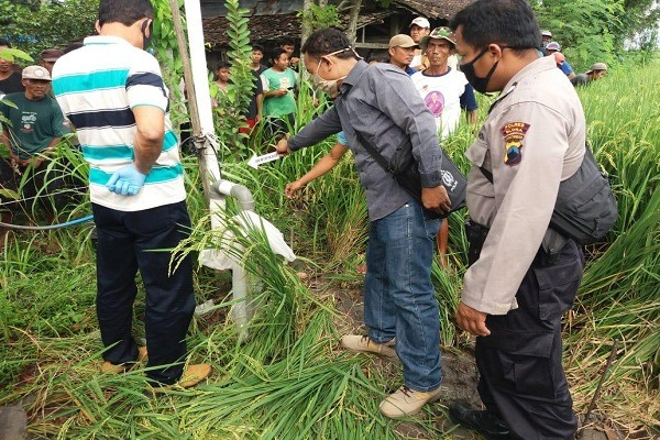 Seorang petani di Kedungtuban tewas kesetrum di sawah