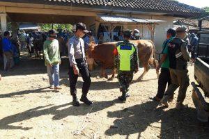 Operasi yustisi di pasar hewan Blora atau pasar Pon Blora.
