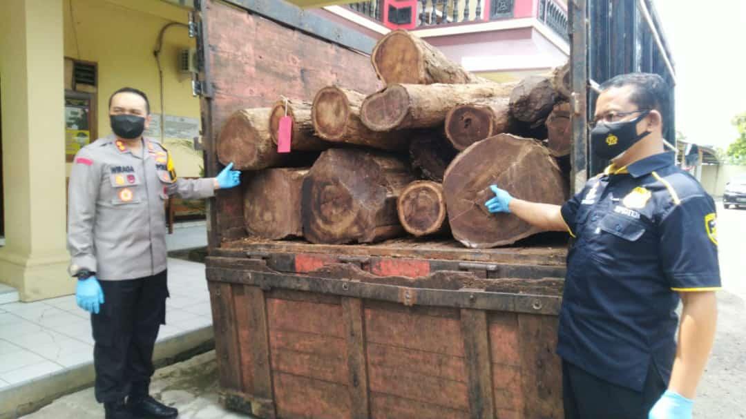 Kapolres dan Kasatreskrim menunjukkan barang bukti kayu